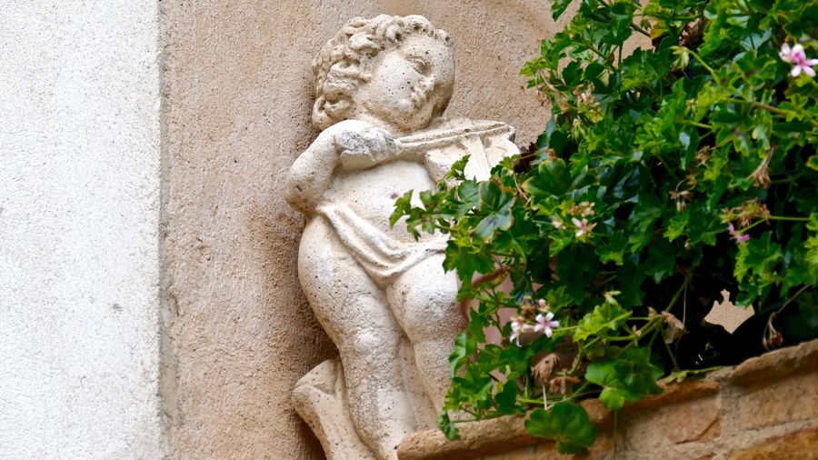 View Of Statue By Plants