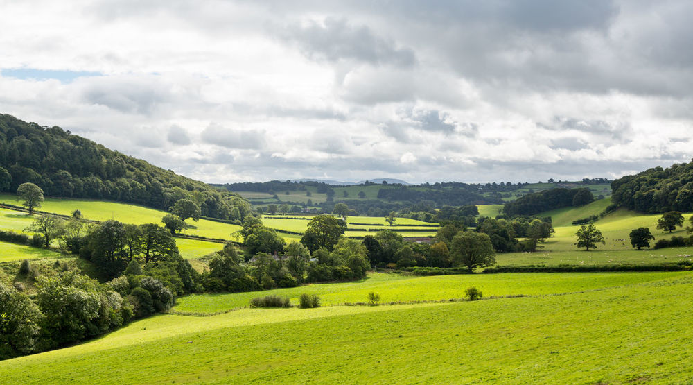 Panoramic landscape in the North Wales area of the United Kingdom with rolling hills and meadows Agriculture Dramatic Sky Farm Grass Green Hills Oswestry Panorama Rolling Hills Rural Wales Wales UK Farming Fields Hillside Landscape Meadow Valley Widescreen