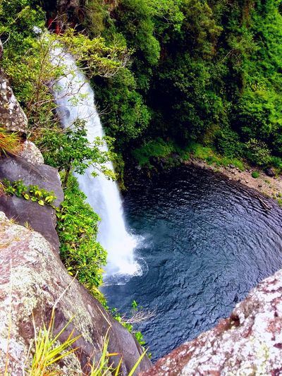 Waterfall Jump In The Water  Take A Breath Ile De La Reunion, Une Beauté, Un Paradis, Mon Ile <3 Paradise