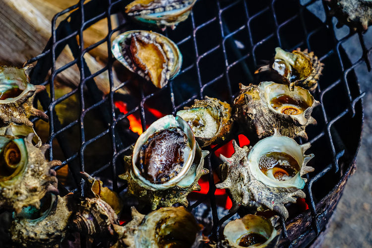 Grilled turban shells in seafood shop near Seopjikoji, Jeju island, South Korea. BBQ BBQ Time Grilling Jeju Jeju Island, Korea Seafood Seafood Market Seafood Lovers Seopjikoji Beach Barbecue Barbecue Grill Close-up Day Food Food And Drink Freshness Grilled High Angle View Meat Metal No People Outdoors Seafood Restaurant Seopjikoji Turban Shell