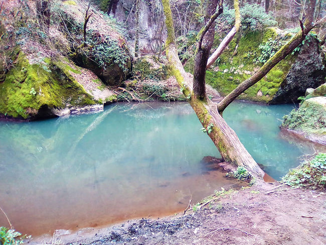 Nature Photography Cascata Day Italy Magia Natural Medioeval History Mistico Montagna Nature Photography Nature No People Outdoors