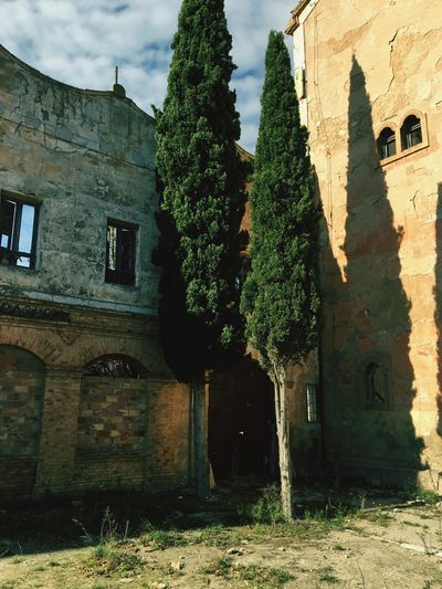 SantaEulalia Vintage