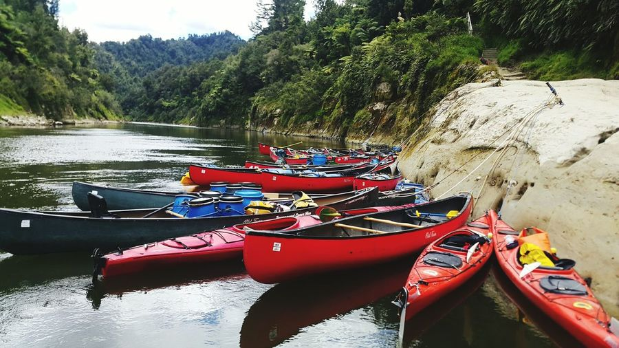 Summer Adventures Bridgetonowhere Whanganuiriver Canoes River Nautical Vessel Water Day Transportation Outdoors Oar Floating On Water Beauty In Nature Nature Kayak Tranquility No People Moored