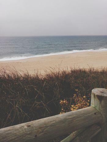 SantaCruzBeach Santacruz Beachphotography Beach Praiadonavio Praia Praiadesantacruz Winterbeach Windowtothebeach Playa