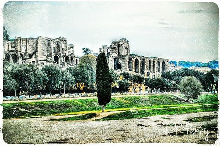 """Home to Emperors"" Circomassimo Palatino Palatine Rome Roma Noidiroma Repostromanticitaly Photobydperry Fb WP Italy Italianarchitecture Italia Lazio Amazing_italy Topeuropephoto Top_italia_photo BenHur Incredible_italy Photooftheday Romanhistory"