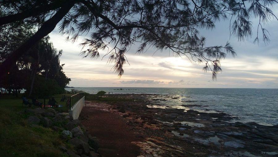 Night cliff Sunset Tree First Eyeem Photo
