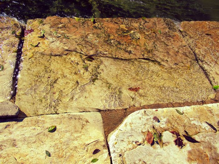 Water Over Rocks Leaves Fallen Sunlight High Angle View Close-up Textured  Rough Full Frame Backgrounds Surface Stone Tile Cracked