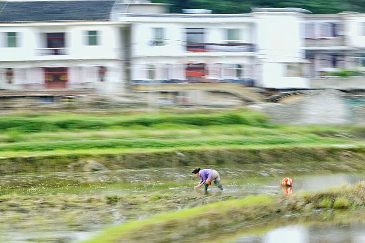 China Culture China Photos China View Landscape Travel Old Town China 's Charm Peasant Guiyang China China,Guizhou Working Hard People City Exploration