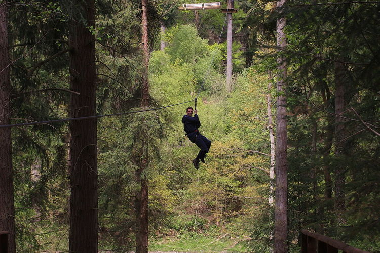 Man Zip Lining Amidst Trees At Forest