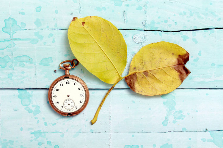 walnut leaves, vintage clock, autumn Autumn Autumn Leaves Vintage Clock Wood Autumn Autumn Contrast Blue Change Clock Clock Tower Close-up Concept Day Fall Fall Concept Leaf No People Outdoors Time Time To Reflect Walnut Leaf Yellow