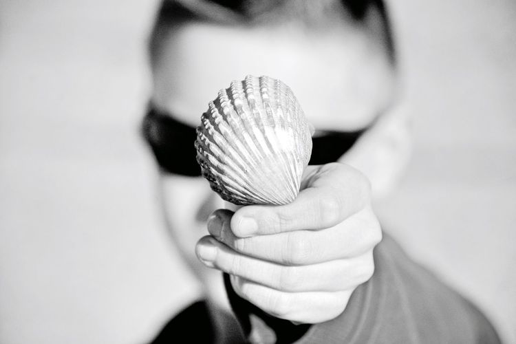 Close-Up Of Man Showing Seashell