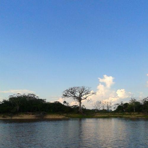 Geografia Geoamor Amazonia Amazonas Nature Brasil ♡
