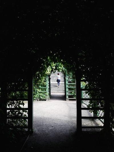 Kadriorg Castle Garden Tunnel Light In The Darkness Stairs Leaves Simmetry
