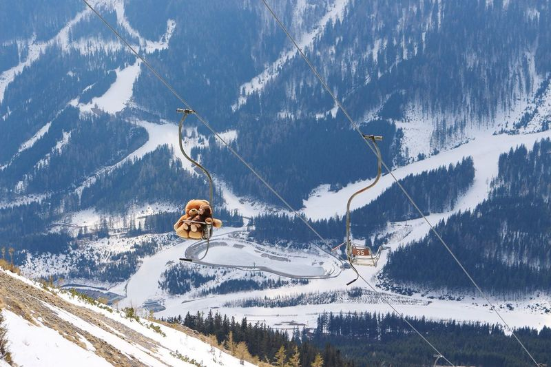 Polsterlift Präbichl Ropeway Chairlift Sesselbahn Sessellift Seilbahn Österreich Austria Skiing Teddybear Teddy Winter Cold Spring Is Coming  Cold Temperature Snow Winter Mountain Transportation Mode Of Transport Non-urban Scene Nature