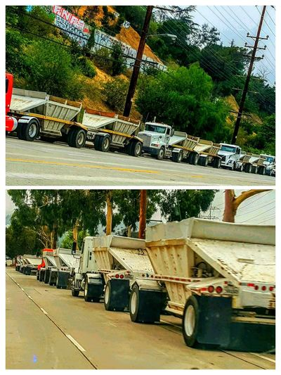 Trucks all lined up to go