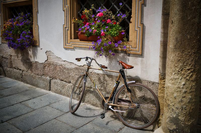 Fahrrad City