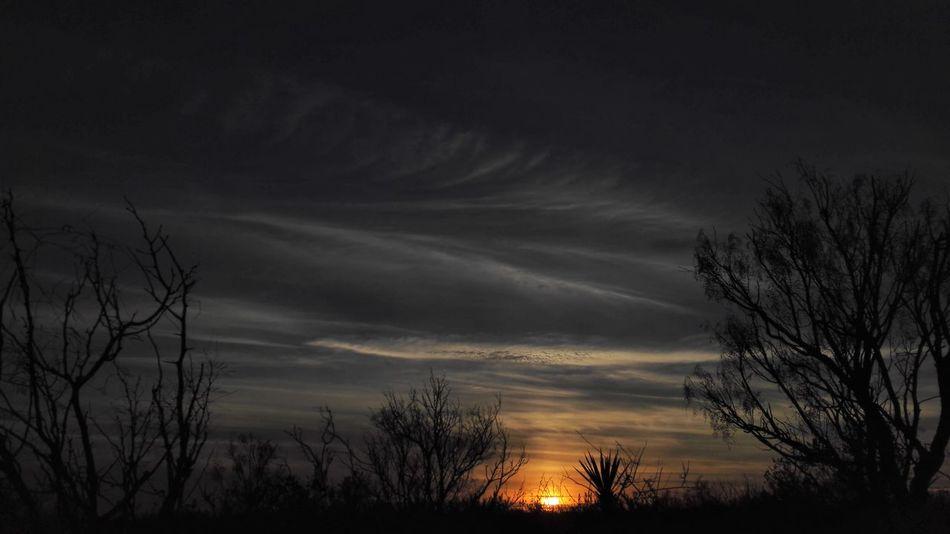 Atardecer Atardeceres Beauty In Nature Cloud - Sky Coahuila Coahuila, México Nature Night No People Outdoors Scenics Silhouette Sky Sunset Tree The Great Outdoors - 2017 EyeEm Awards