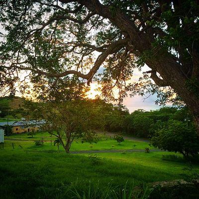 Grenada Shutterbug_collective Caribbean_beautiful_landscapes Hdr_beautiful_landscapes Earth_captures World_beautiful_landscapes Ilivewhereyouvacation Islandlivity Ig_caribbean GOLDENCLiCKS Amazingpics Nature_wizards Iphoneonly