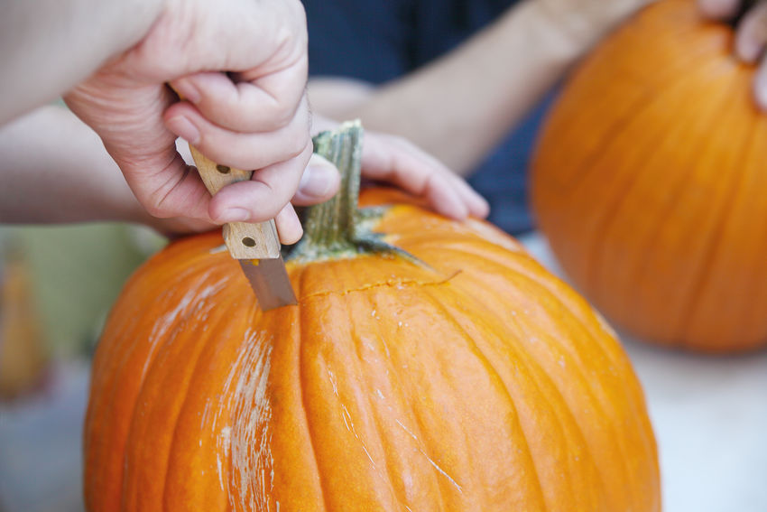 Man carves out Halloween jack o' lantern lid American Culture Autumn Carving Close-up Craft Fall Fingers Halloween Hands Holding Holiday Tradition Knife Men Natural Light October Orange Color Outdoors Seasonal Using Tool Vegetables