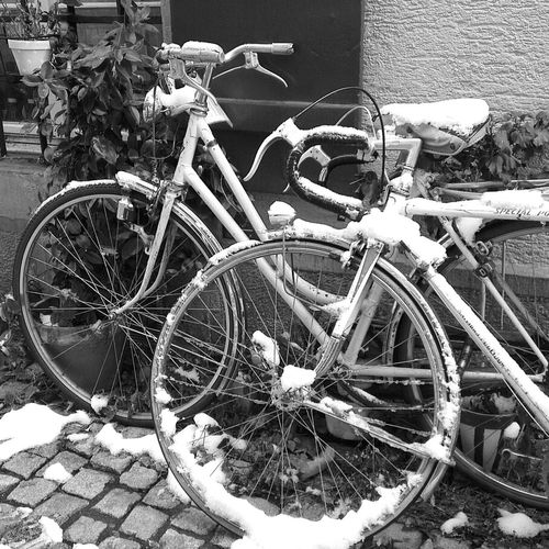 Hanging Out Blackandwhite Cycling Bicycle Snow Zürich Switzerland Bws_worldwide