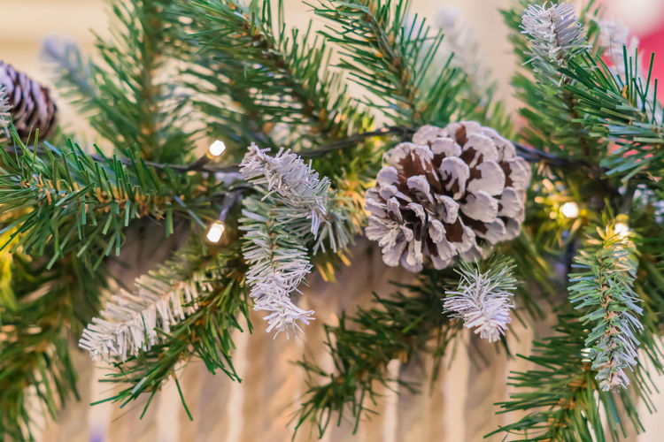 Christmas and new year holidays background. christmas tree decorated with cones and balls.