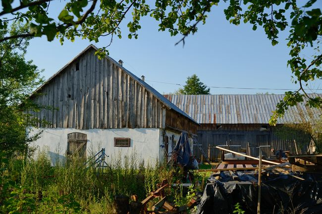 Old Farm in Poland Farm Poland Rural Weathered Agricultural Building Architecture Barn Building Building Exterior Built Structure Day Farm Growth House Land Nature No People Old Outdoors Plant Sky Tree Vintage Wood - Material