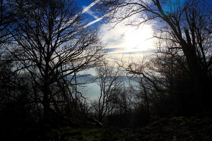#clouds  Nature #landscape #photography #forest #moutain #clound #sky #blue #peace Sunset #sun #clouds #skylovers #sky #nature #beautifulinnature #naturalbeauty #photography #landscape Treeporn# Landscape #sky #horizon #cloudporn Trees #leaves #sunlight #warm Color