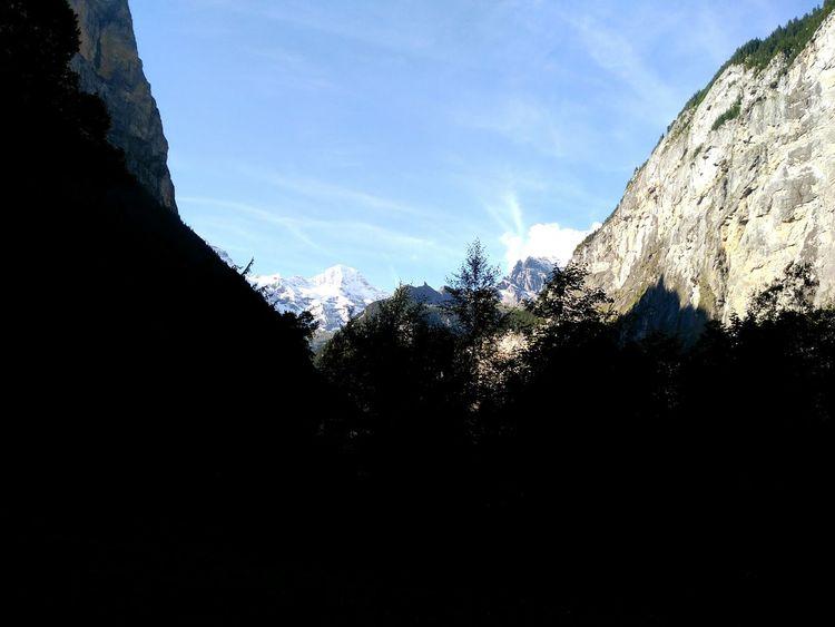 No People Sky Tree Outdoors Day Nature Alpessuisses Grass Tree Landscape Springtime Switzerlandpictures Switzerland Switzerland Alps Mountain Range Alpes Suiza Mountain Peak Mountain Travel Destinations Tourism