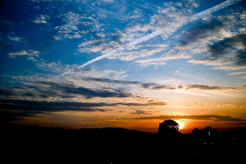 空 夕日 雲 Japan Sunset Multi Colored Blue Silhouette Beauty Urban Skyline Tree Politics And Government Dramatic Sky Sky Sky Only Skyline