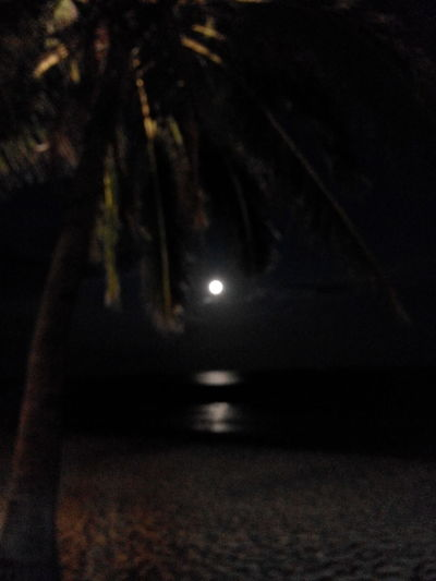 Night Moon Illuminated No People Star - Space Outdoors Astronomy Nature Space Sky beach