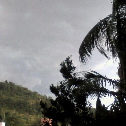 Tempo Fechou de uma Hora pra outra ☁ Chovendo demais ☔ da janela do meu quarto 🏡