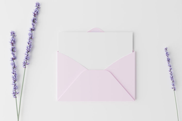 Close-up of purple paper against white background