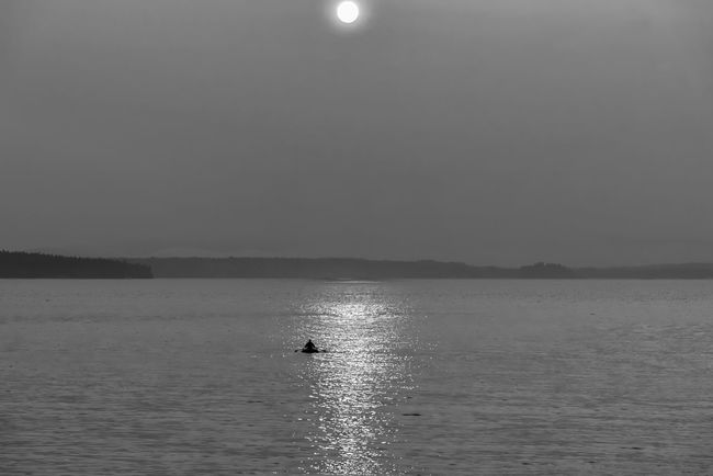 Man in rowboat under hazy sun Beauty In Nature Minimalism Moon Nature Outdoor Recreation Outdoors Rowboat Scenics Sea Sky Tranquility Water