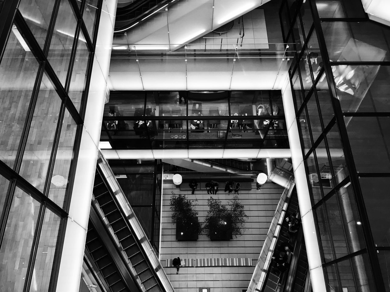 architecture, built structure, steps and staircases, indoors, railing, staircase, low angle view, steps, modern, illuminated, no people, day, building exterior