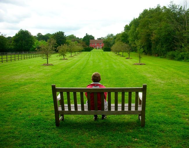 Rear view full length of man sitting on bench in lawn