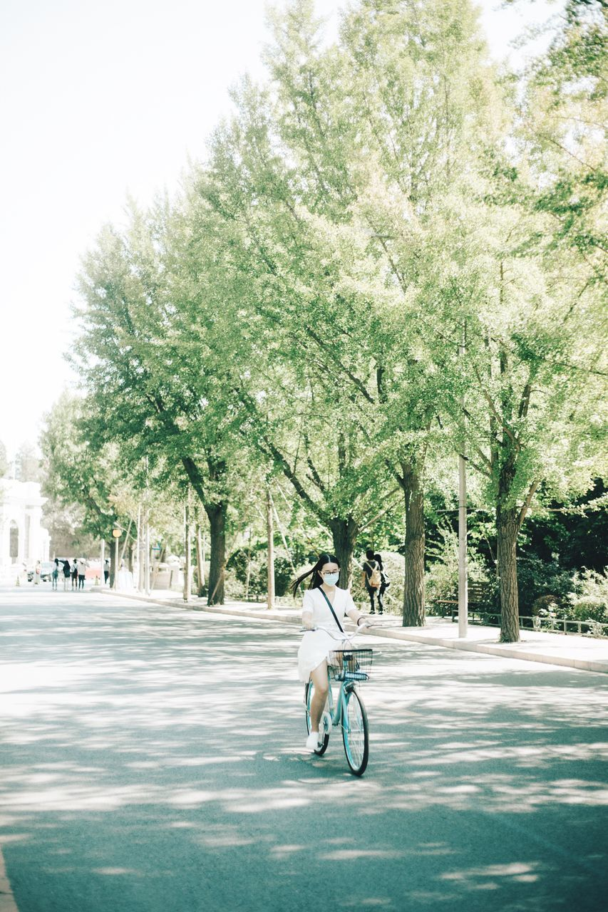 tree, bicycle, transportation, mode of transport, one person, cycling, outdoors, day, full length, road, street, real people, riding, city, land vehicle, nature, men, branch, architecture, sky, people