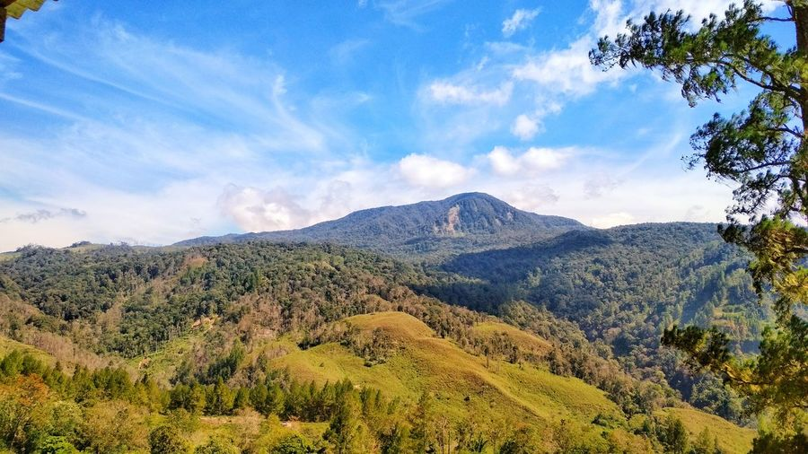Beautiful mountain nature Landscape_Collection Lansdcape Landascapephotography Naturelovers Nature Photography Alamindonesia Aceh Tourism Aceh, Indonesia Gunung Leuser National Park Tree Mountain Forest Pinaceae Pine Tree Blue Sky Landscape Mountain Range Cloud - Sky Volcanic Landscape Mountain Peak Volcanic Rock Active Volcano Snowcapped Mountain Volcano Erupting Growing
