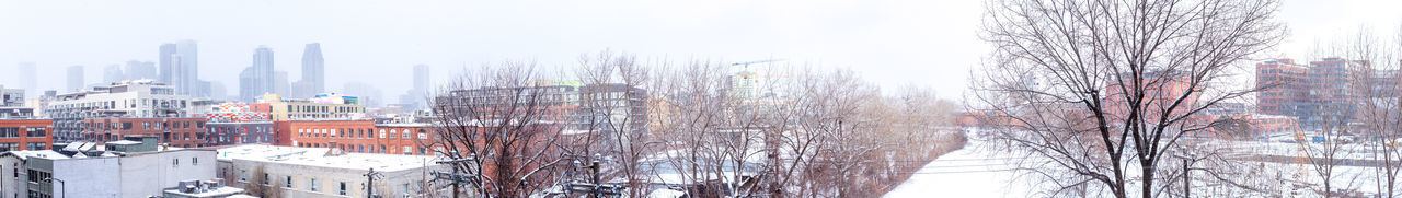Panoramic shot of bare trees and buildings against sky