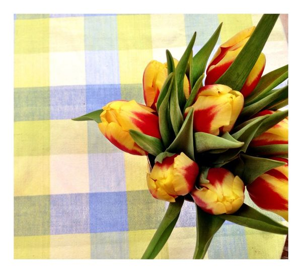 Happy Flower Friday