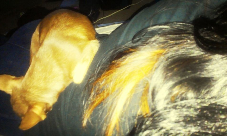 My Baby Went To Sleep On My Back <3