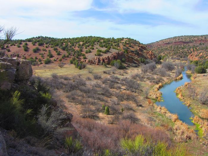 The Upper Verde River at Bull Basin, Arizona. Midwinter. Arizona Creek Pasture Ranch Winter Beauty In Nature Canyon Day Geology Landscape Nature No People Outdoors Physical Geography River Riverbank Scenics Tranquil Scene Tranquility Water Verde River Perspectives On Nature Shades Of Winter