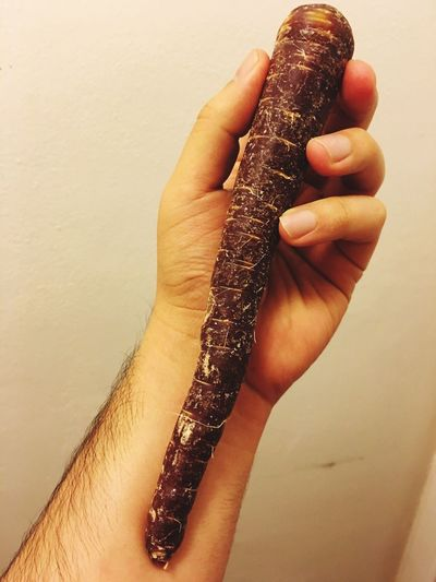 Human Hand One Person Real People Human Body Part Holding Unrecognizable Person Reptile Lifestyles One Animal Animal Themes Close-up Animals In The Wild Day Indoors  Purple Carrot Purple Forearm