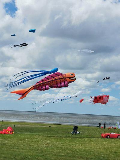 Das Drachenfest... Aerobatics Airshow Airplane Flying Parachute Water Air Vehicle Kite - Toy Mid-air Vapor Trail