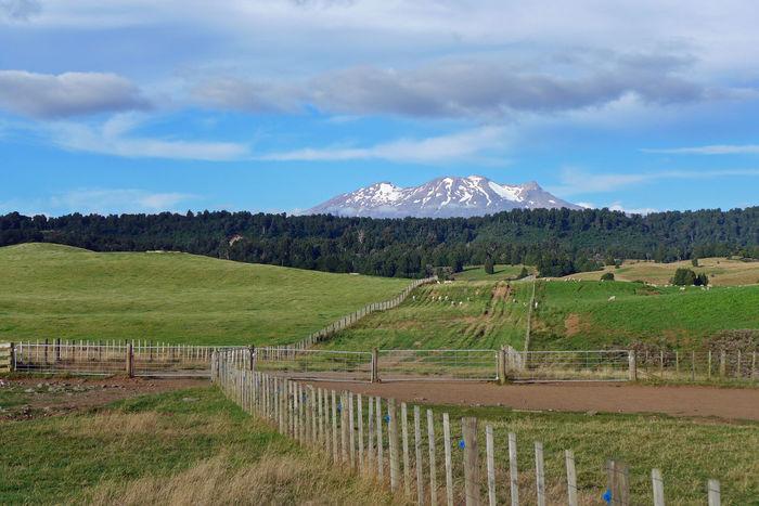 Beauty In Nature Landscape Mountain New Zealand New Zealand Beauty No People Ruapehu Snow Vulcano