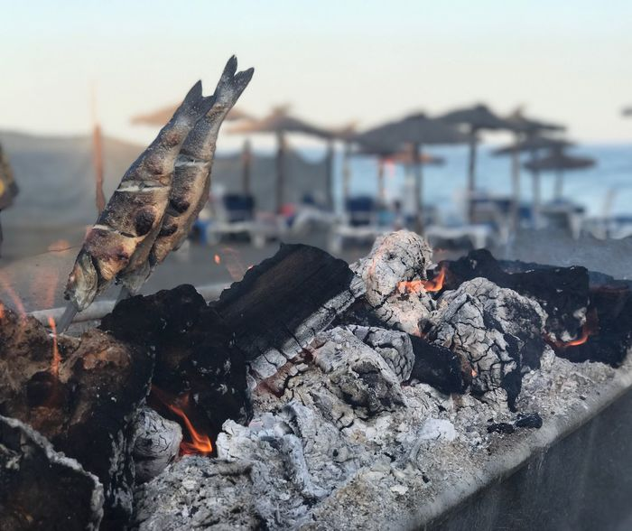 Burning No People Outdoors Day Focus On Foreground Animals In The Wild Heat - Temperature Flame Water Animal Themes Nature Bird Close-up Ash Sky Estepona CostadelSol Espeto Sardinas Sardines Beach Food Fish Barbecue SurfCasting EyeEm Selects EyeEm Selects