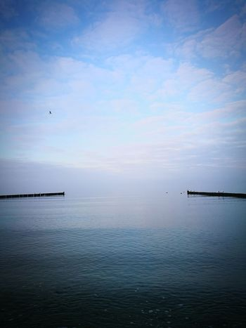 Sea Water Beauty In Nature Nature Scenics Horizon Over Water No People Bird Sky