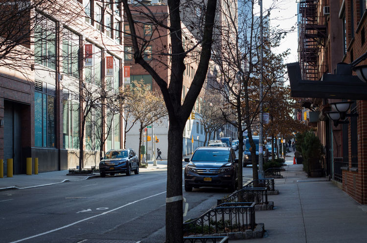 Street New York Mode Of Transportation Motor Vehicle Car Transportation Architecture Land Vehicle City Building Exterior Tree Bare Tree Built Structure Road Building Plant Day City Street Direction Residential District Footpath No People Outdoors Treelined