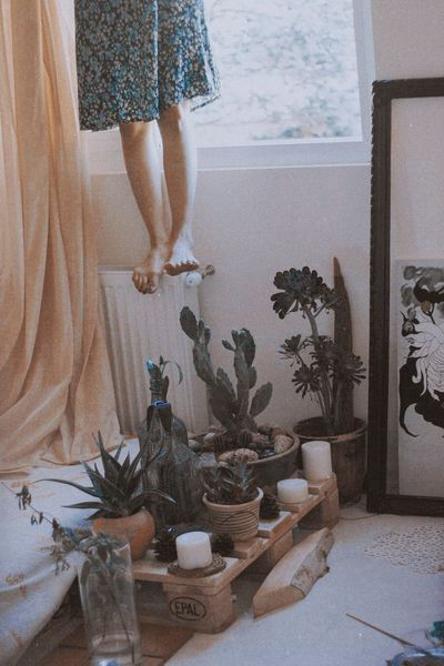 Sit down, we gotta talk Indoors  One Person Women Human Body Part Home Interior Plant Adult Low Section Potted Plant Window Clothing Pattern Domestic Room Curtain Body Part Human Leg