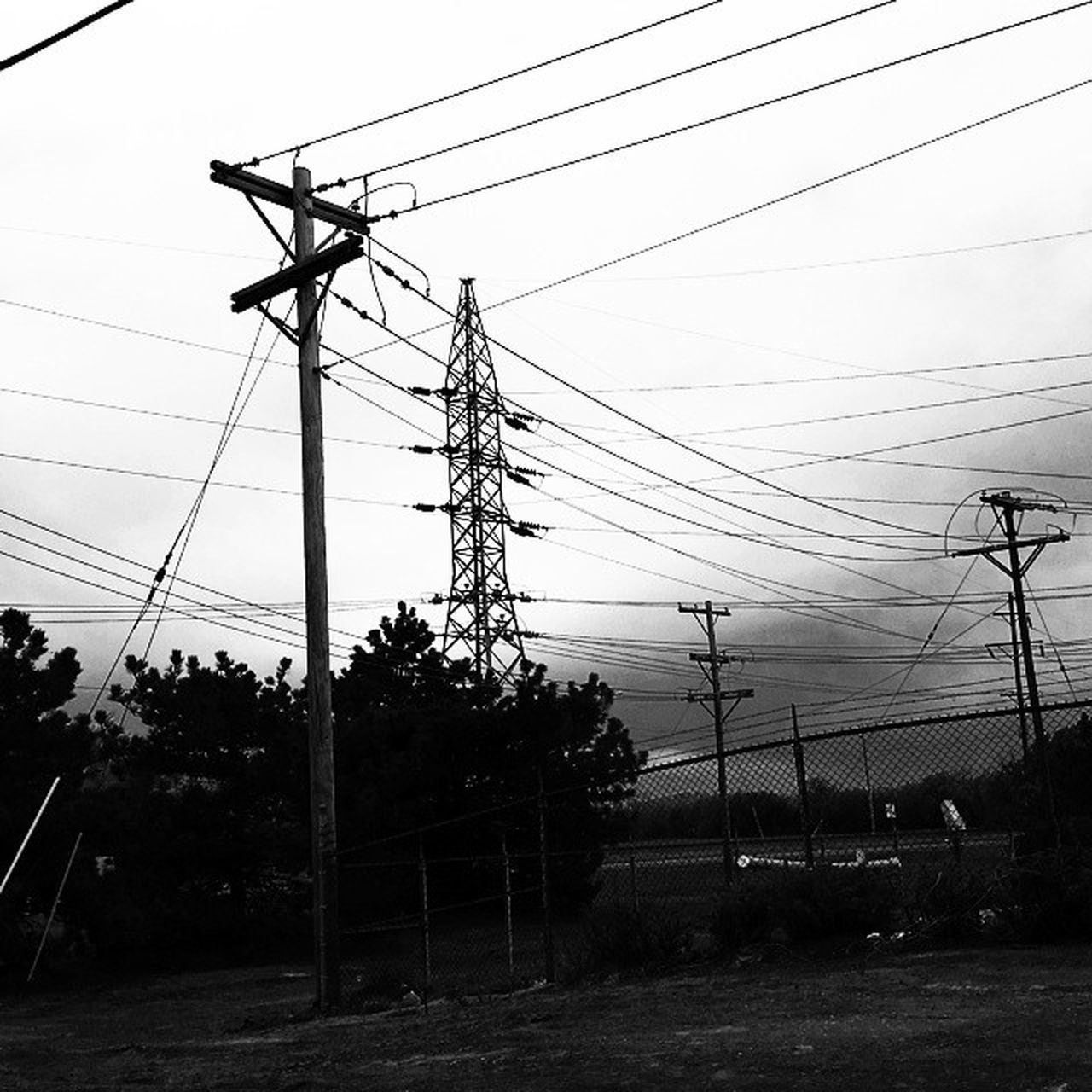 cable, power line, electricity, power supply, electricity pylon, connection, fuel and power generation, technology, sky, low angle view, no people, outdoors, day, complexity, tree, telephone line, nature