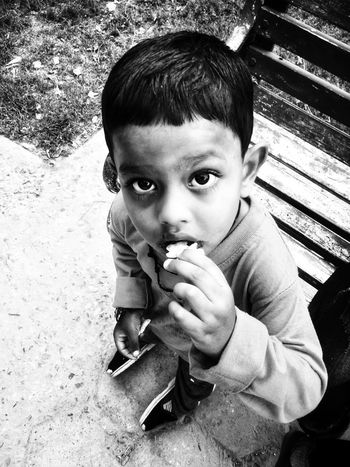 Childhood One Person Real People High Angle View Looking At Camera Boys Day Holding Outdoors One Boy Only Lifestyles Sitting Leisure Activity Close-up Human Hand Portrait